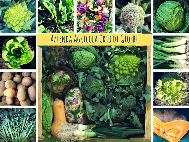 Erba di Campo, Broccolo, Minestrone, Friarielli, Spinaci, Verza, Zucca, Cipolline Fresche....