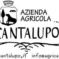 Logo cantalupo altarisoluz2